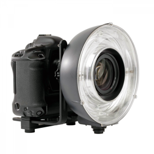 Elinchrom Flash Anelar Quadra Eco