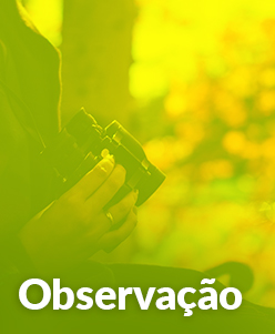 Observação