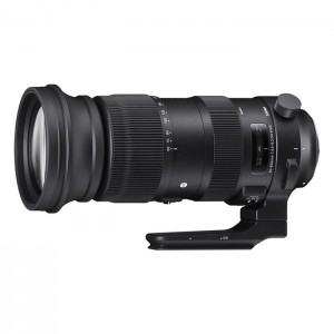 Sigma 60-600mm f/4.5-6.3 DG OS HSM Sports para Canon
