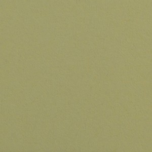 Colorline Fundo Cartolina 13 Tropical Green - 1,35x11mt