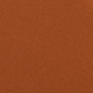 Colorline Fundo Cartolina 48 Spice - 2,72x11mt