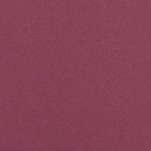 Colorline Fundo Cartolina 62 Plum - 2,72x11mt