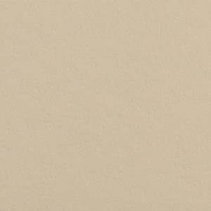 Colorline Fundo Cartolina 64 Fawn - 2,72x11mt