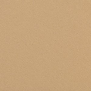 Colorline Fundo Cartolina 66 Wheat - 2,72x11mt